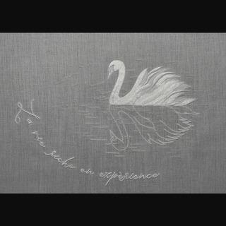 20210612_swan1.jpg
